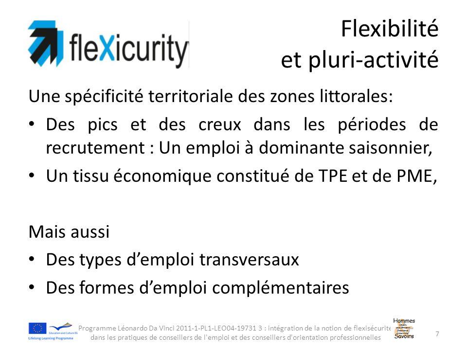 Flexibilité et pluri-activité