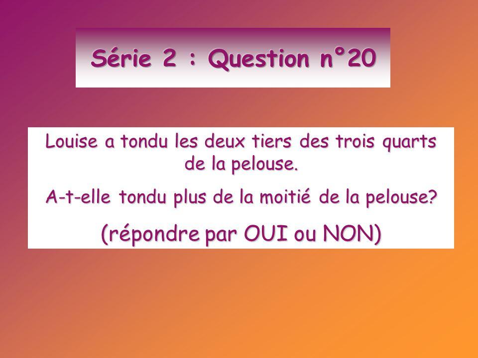 Série 2 : Question n°20 (répondre par OUI ou NON)