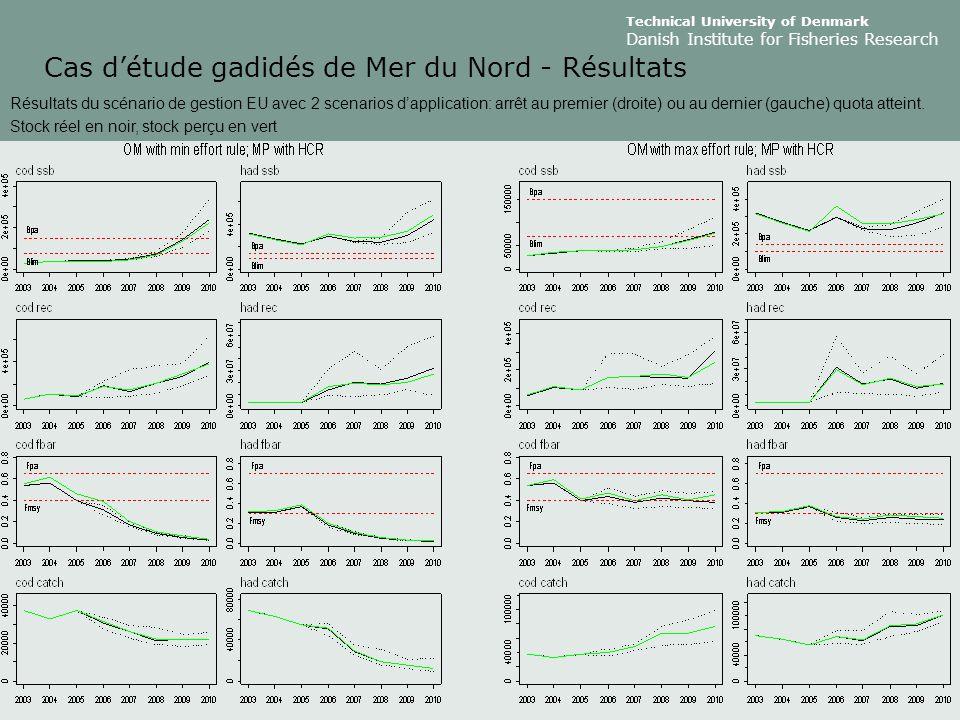 Cas d'étude gadidés de Mer du Nord - Résultats