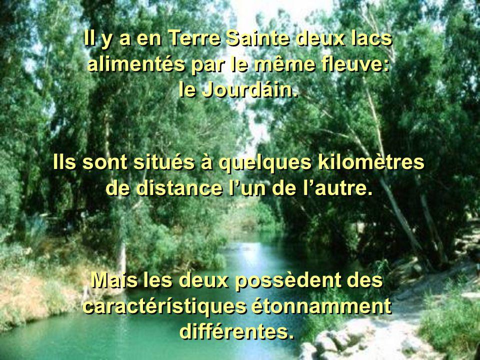 Il y a en Terre Sainte deux lacs alimentés par le même fleuve: