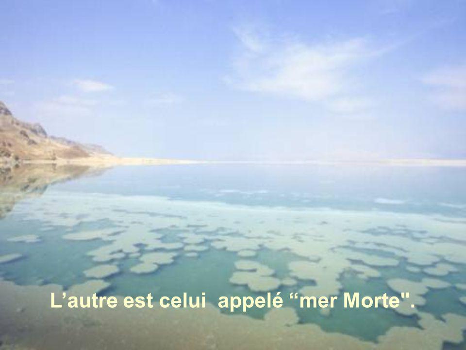 L'autre est celui appelé mer Morte .