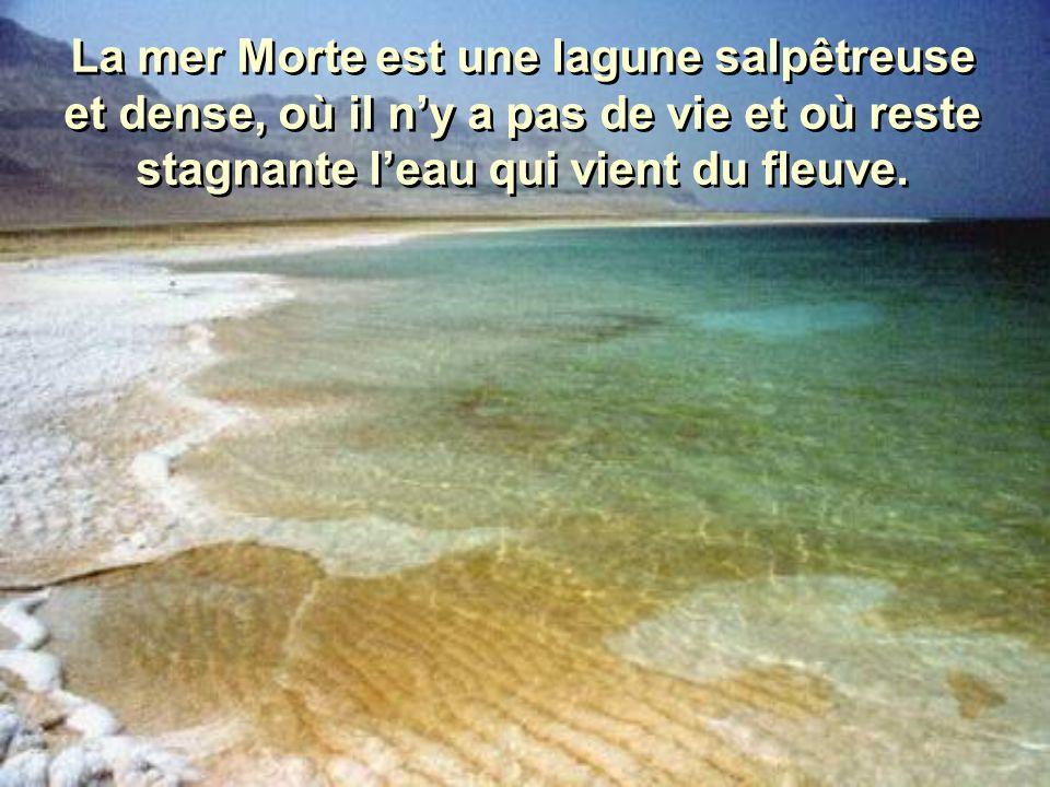 La mer Morte est une lagune salpêtreuse