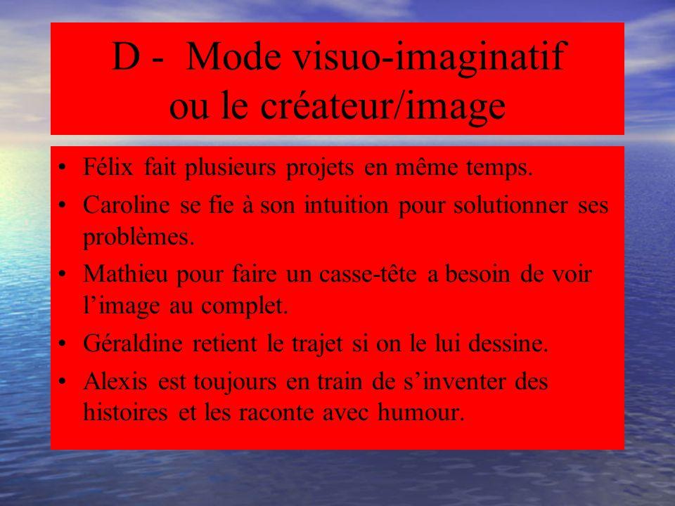 D - Mode visuo-imaginatif ou le créateur/image