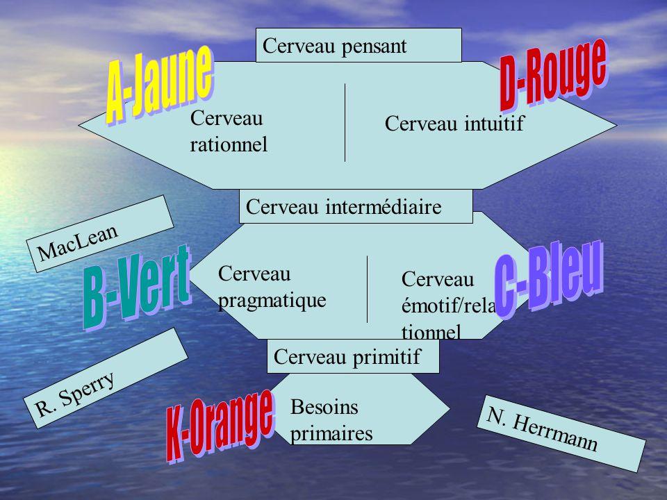 D-Rouge A-Jaune C-Bleu B-Vert K-Orange Cerveau pensant