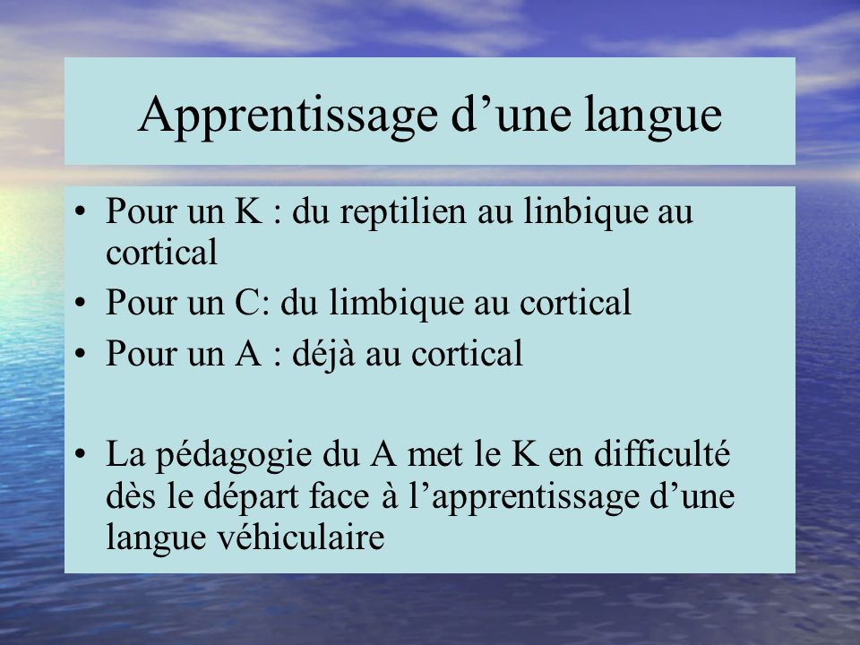Apprentissage d'une langue