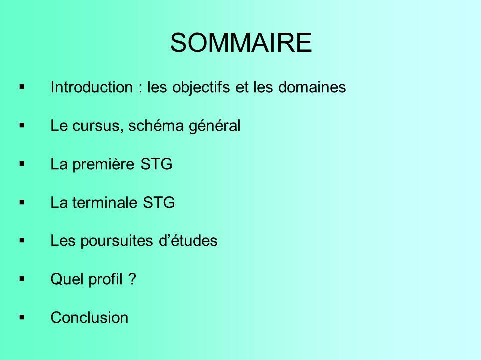SOMMAIRE Introduction : les objectifs et les domaines