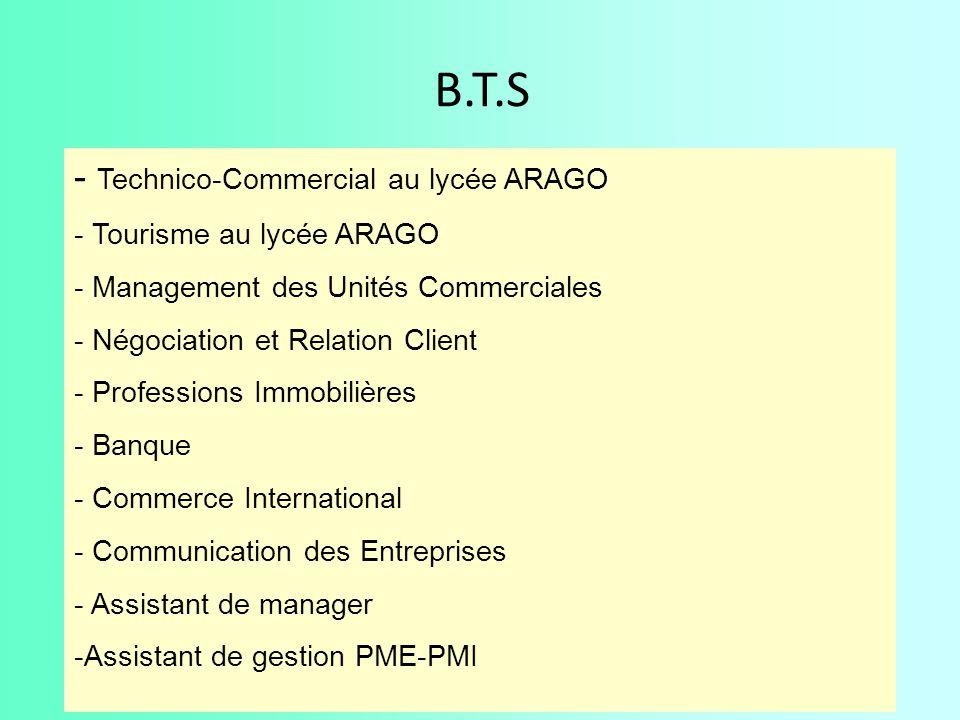 B.T.S Technico-Commercial au lycée ARAGO Tourisme au lycée ARAGO