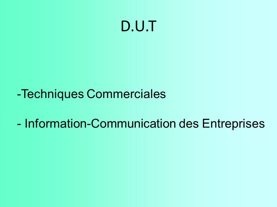D.U.T Techniques Commerciales