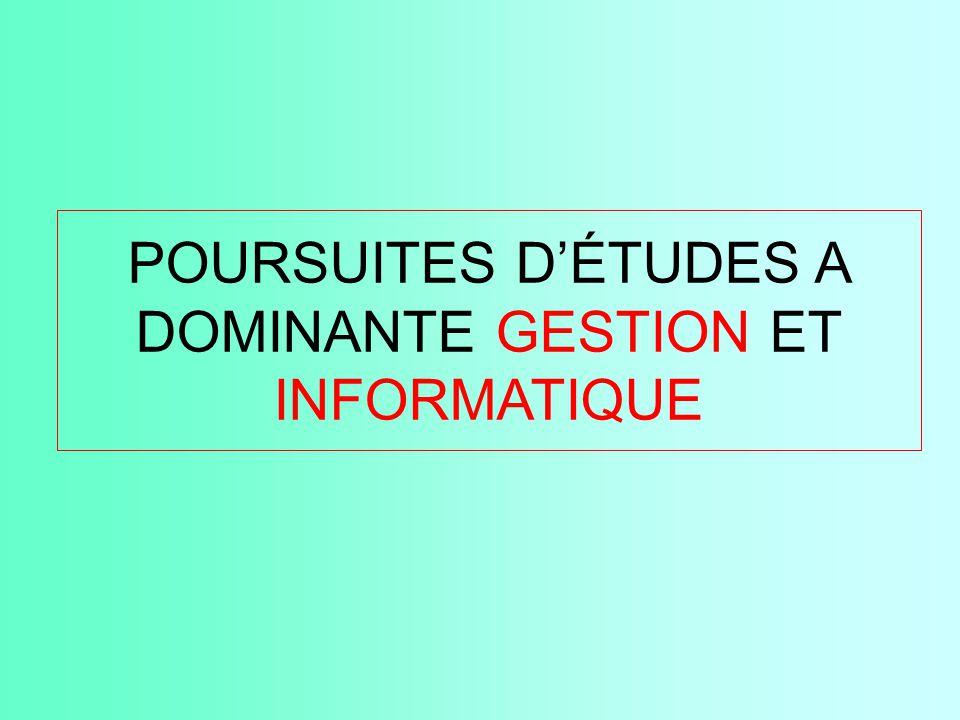 POURSUITES D'ÉTUDES A DOMINANTE GESTION ET INFORMATIQUE