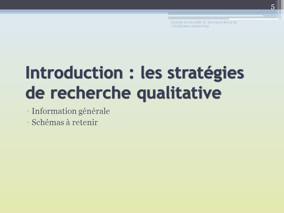 Introduction : les stratégies de recherche qualitative