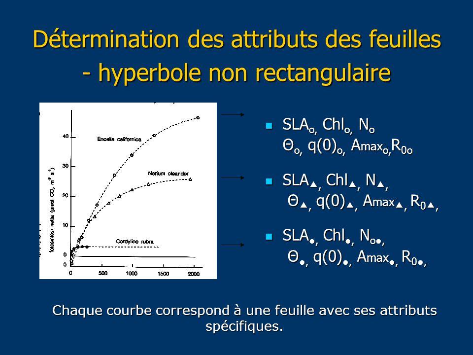 Détermination des attributs des feuilles - hyperbole non rectangulaire