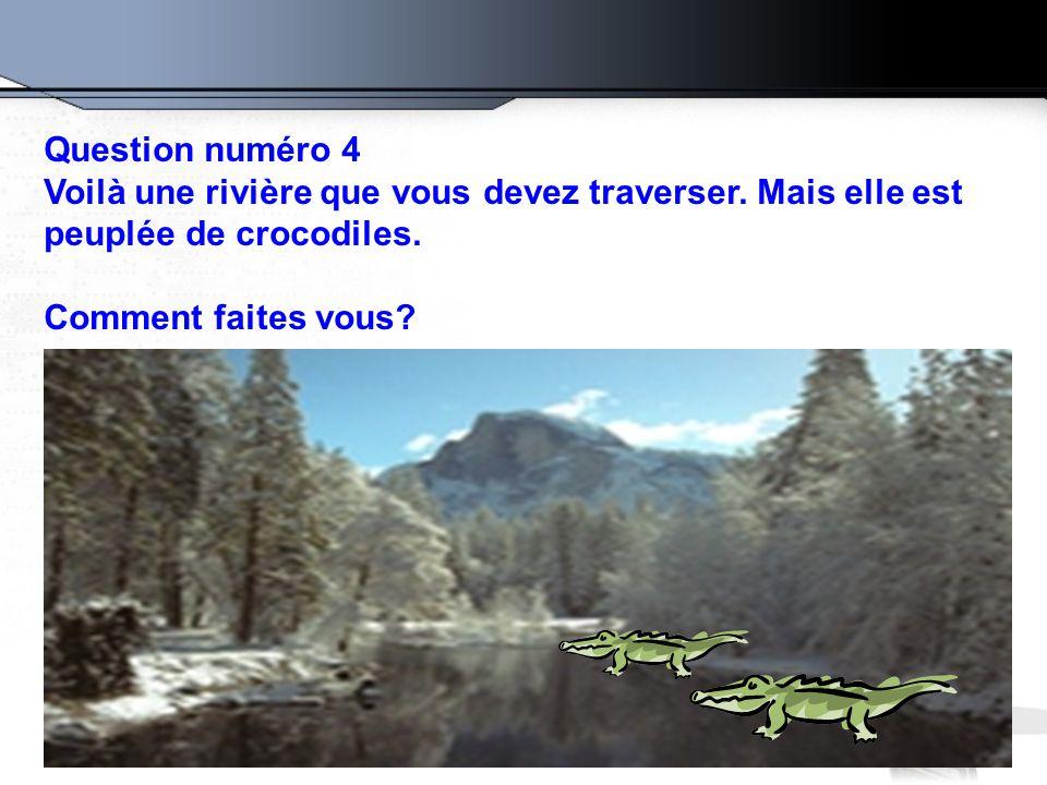 Question numéro 4 Voilà une rivière que vous devez traverser. Mais elle est. peuplée de crocodiles.