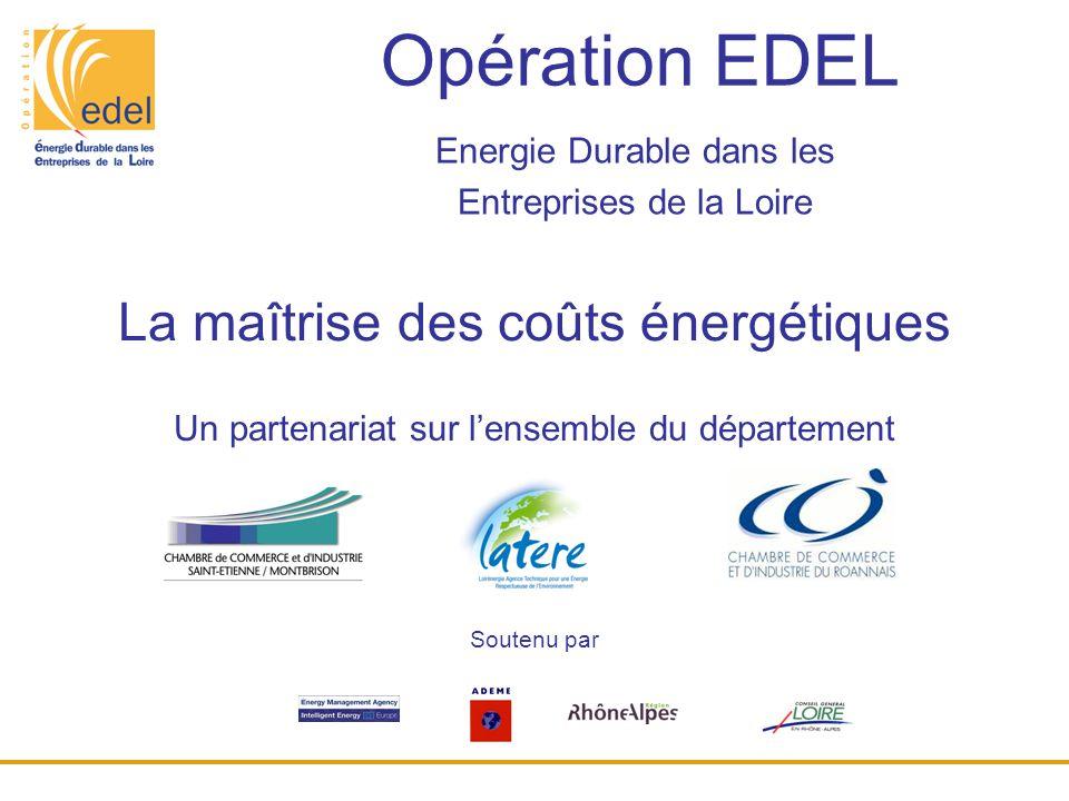 Energie Durable dans les Entreprises de la Loire