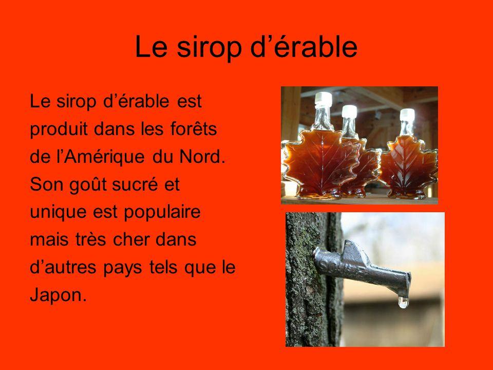 Le sirop d'érable Le sirop d'érable est produit dans les forêts