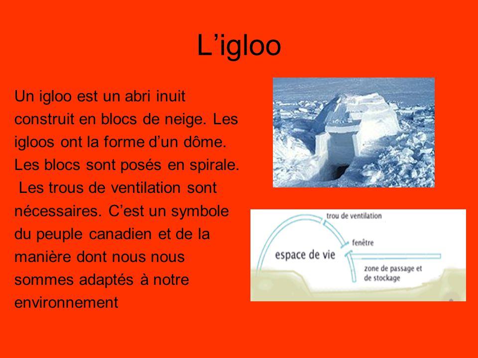L'igloo Un igloo est un abri inuit construit en blocs de neige. Les