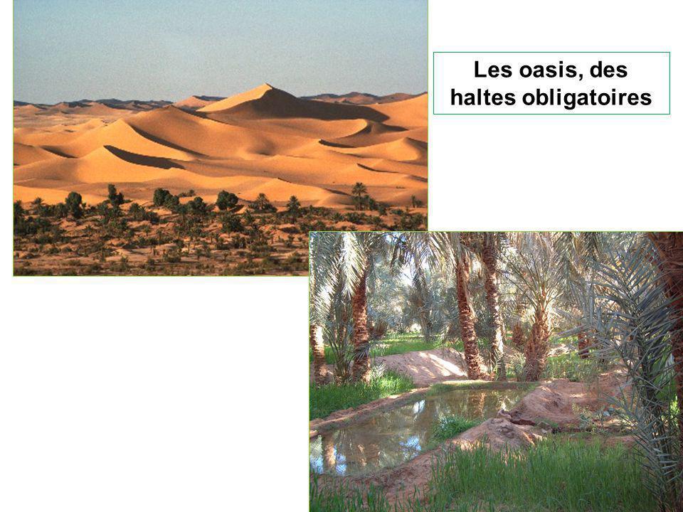 Les oasis, des haltes obligatoires