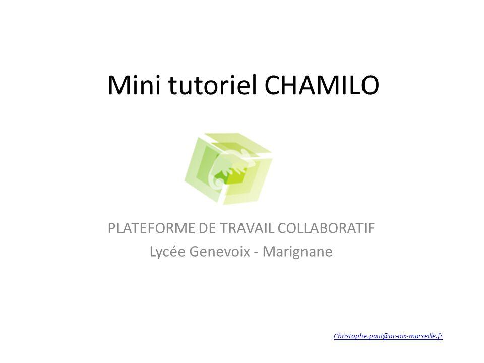 PLATEFORME DE TRAVAIL COLLABORATIF Lycée Genevoix - Marignane