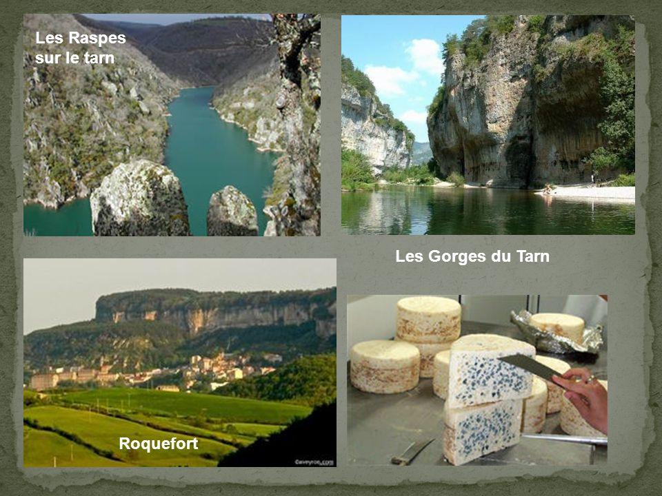 Les Raspes sur le tarn Les Gorges du Tarn Roquefort