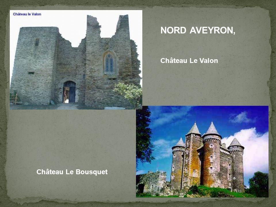 NORD AVEYRON, Château Le Valon Château Le Bousquet