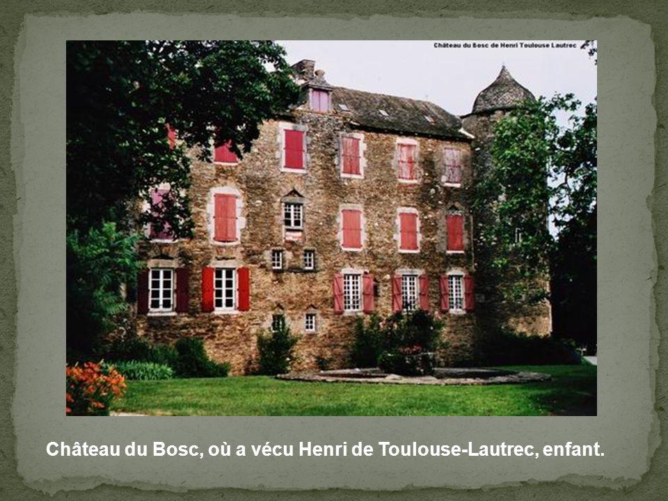 Château du Bosc, où a vécu Henri de Toulouse-Lautrec, enfant.