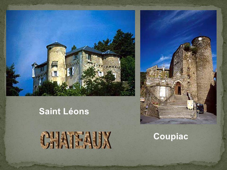 Saint Léons Coupiac CHATEAUX