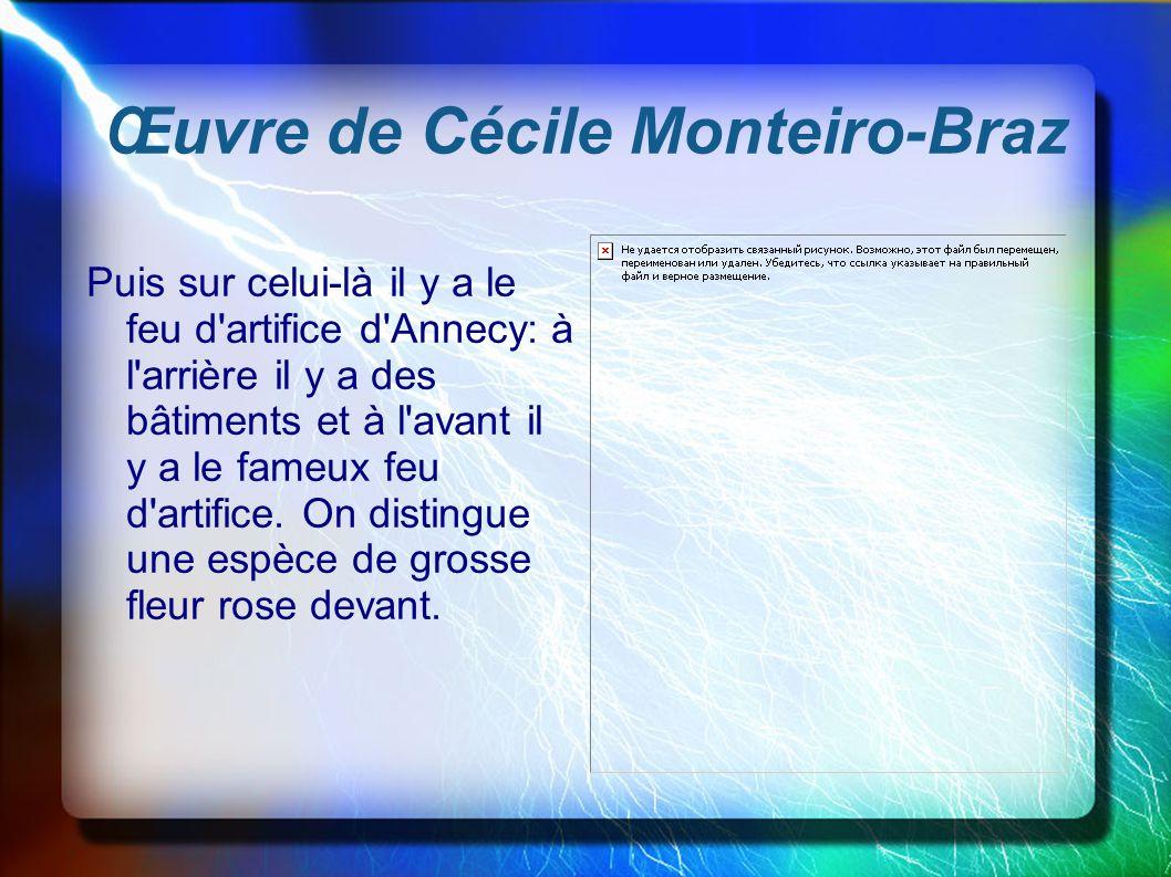 Œuvre de Cécile Monteiro-Braz