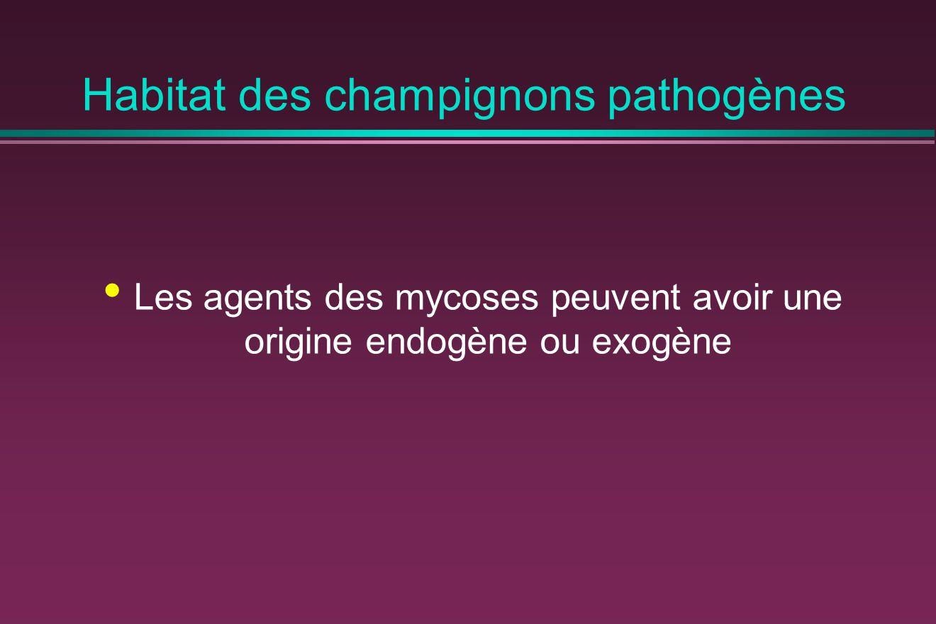 Habitat des champignons pathogènes