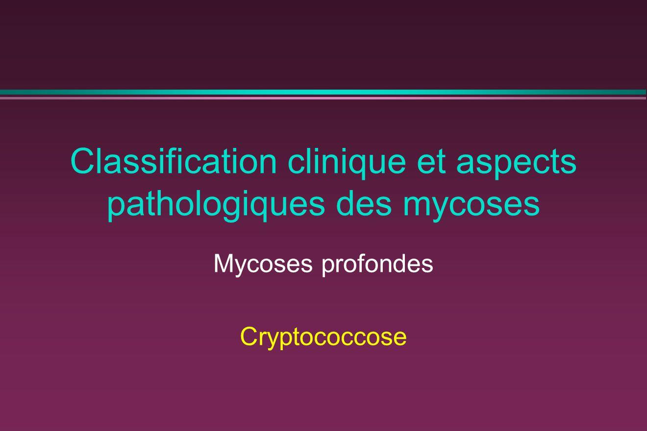 Classification clinique et aspects pathologiques des mycoses