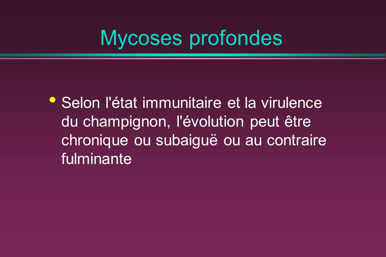 Mycoses profondes Selon l état immunitaire et la virulence du champignon, l évolution peut être chronique ou subaiguë ou au contraire fulminante.