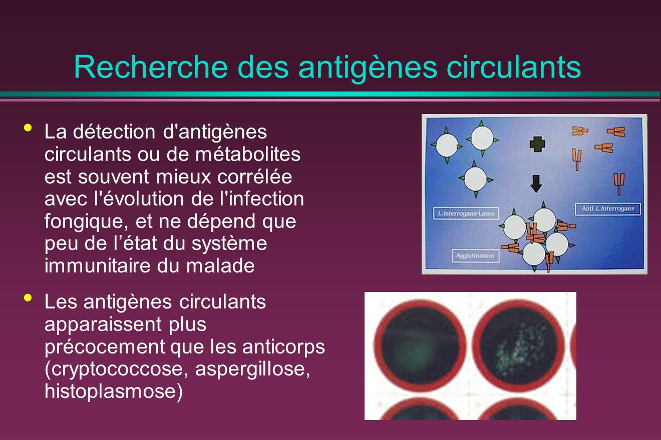 Recherche des antigènes circulants