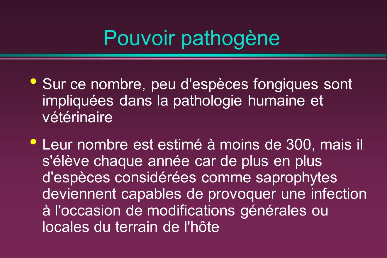Pouvoir pathogène Sur ce nombre, peu d espèces fongiques sont impliquées dans la pathologie humaine et vétérinaire.