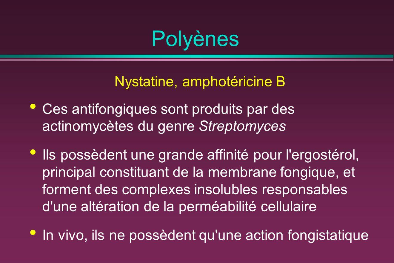 Nystatine, amphotéricine B