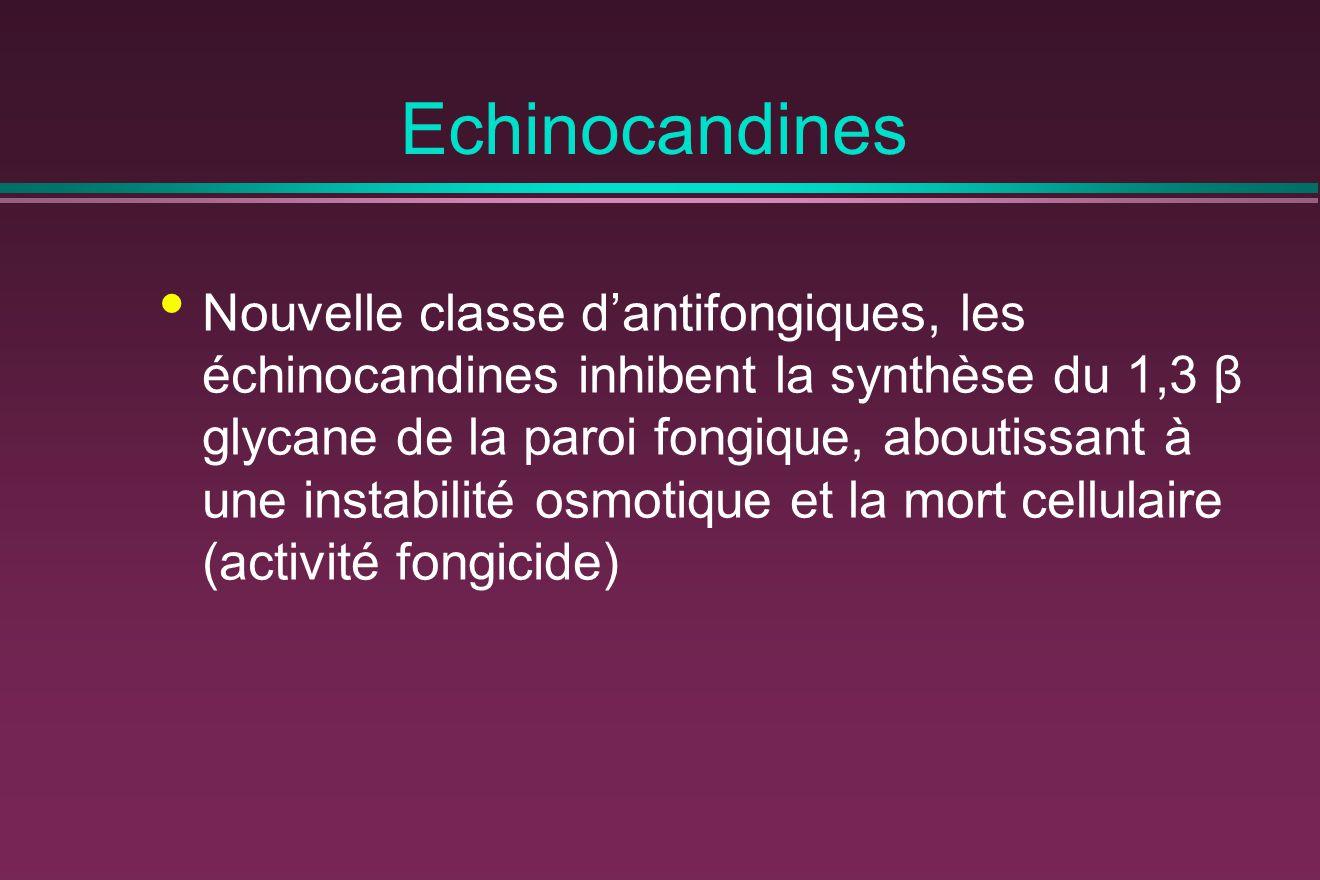Echinocandines