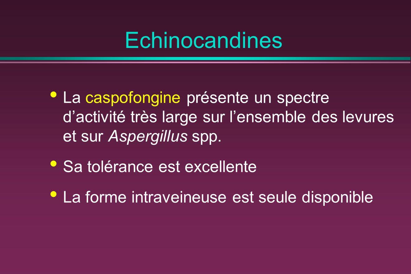 Echinocandines La caspofongine présente un spectre d'activité très large sur l'ensemble des levures et sur Aspergillus spp.