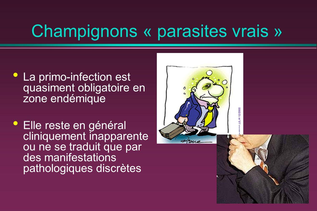 Champignons « parasites vrais »