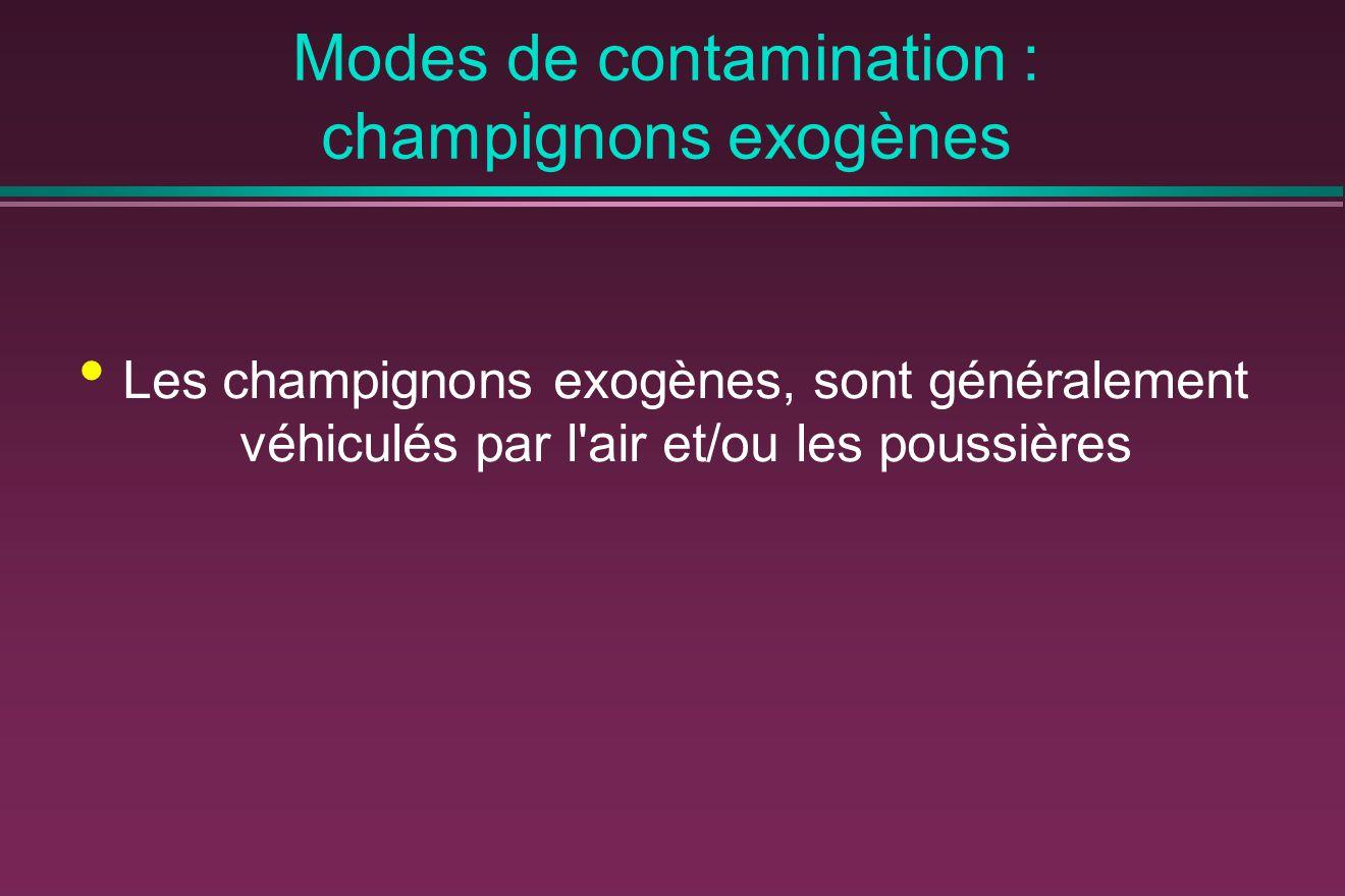 Modes de contamination : champignons exogènes