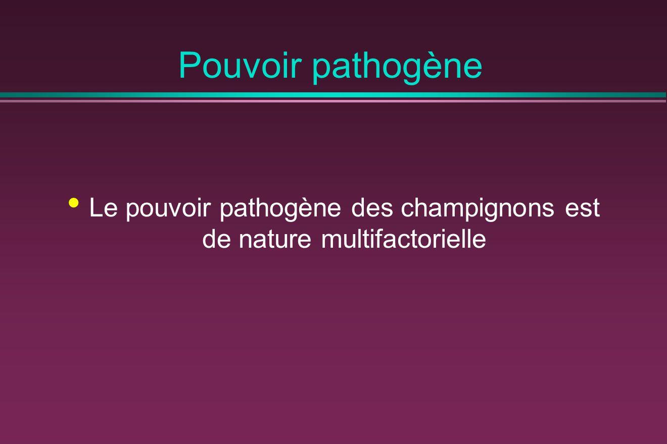 Le pouvoir pathogène des champignons est de nature multifactorielle