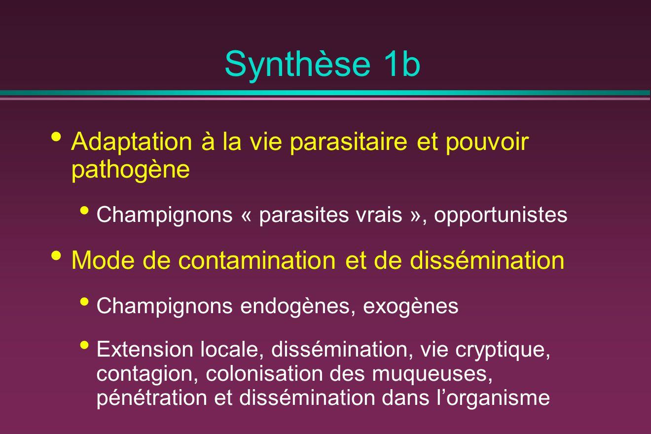 Synthèse 1b Adaptation à la vie parasitaire et pouvoir pathogène