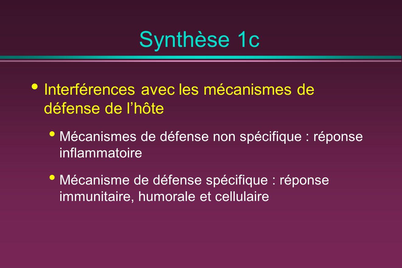 Synthèse 1c Interférences avec les mécanismes de défense de l'hôte