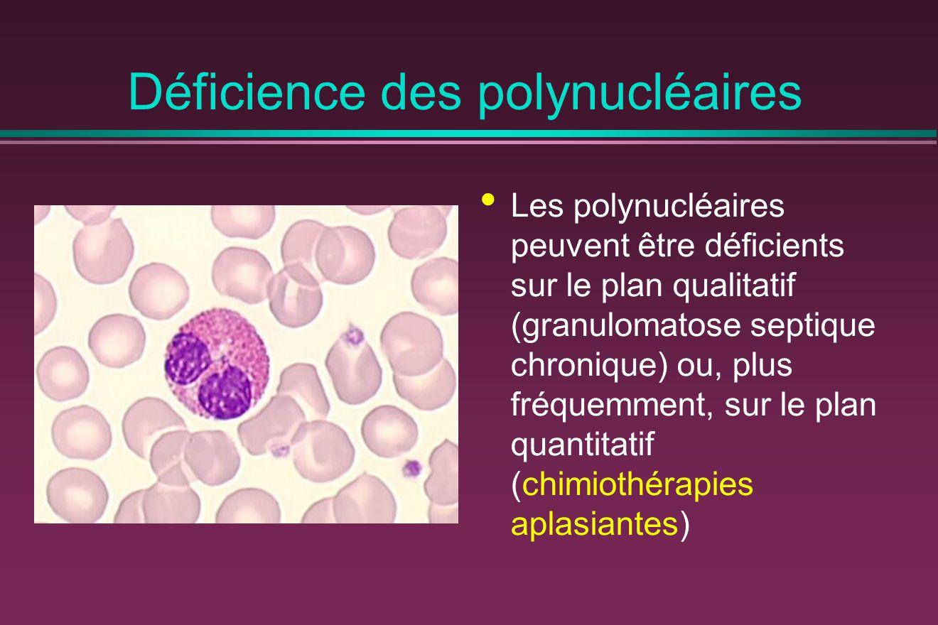 Déficience des polynucléaires