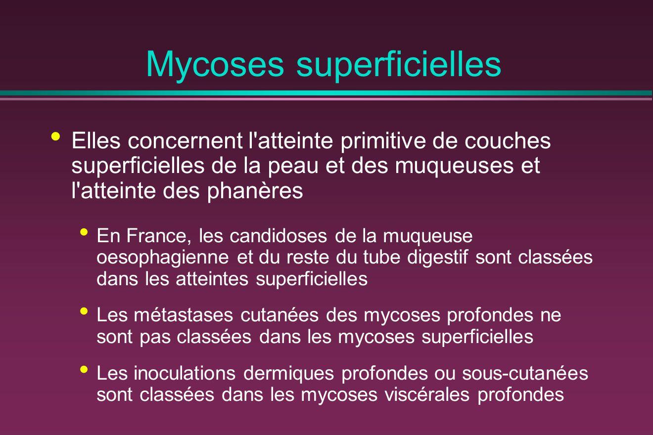 Mycoses superficielles
