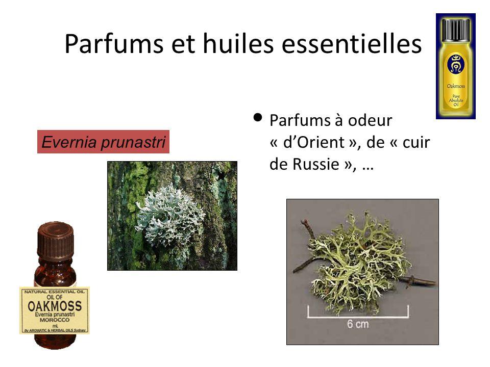 Parfums et huiles essentielles