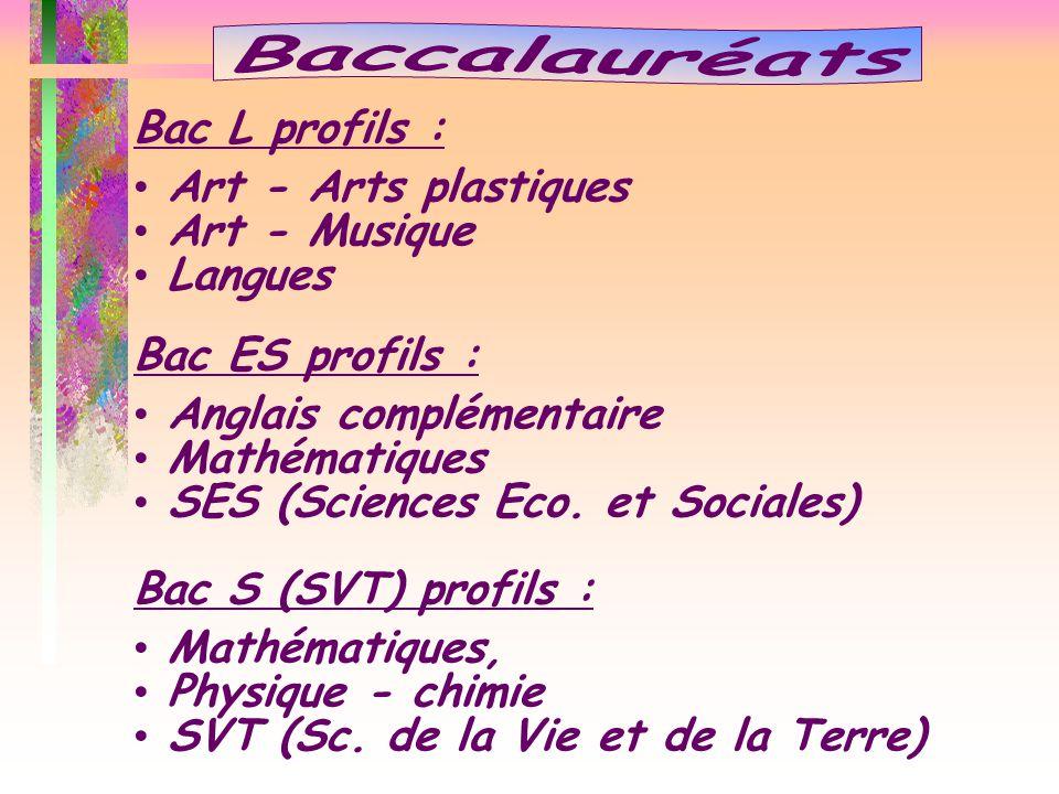 Baccalauréats Bac L profils : Art - Arts plastiques Art - Musique