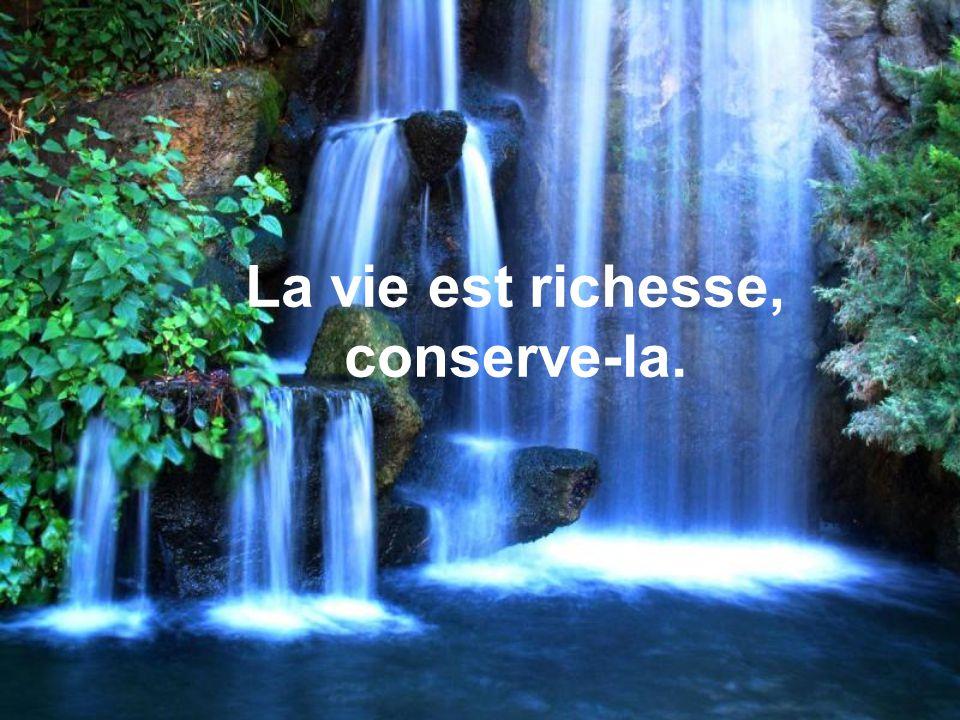 La vie est richesse, conserve-la.