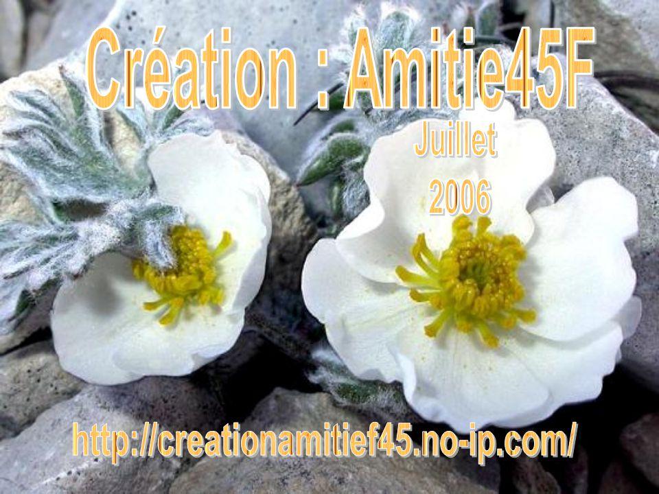 Création : Amitie45F Juillet 2006 http://creationamitief45.no-ip.com/
