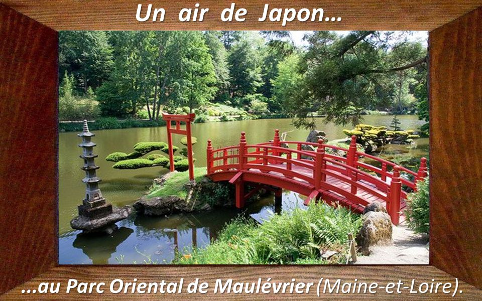 ...au Parc Oriental de Maulévrier (Maine-et-Loire).