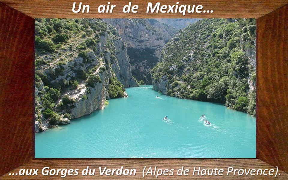 ...aux Gorges du Verdon (Alpes de Haute Provence).