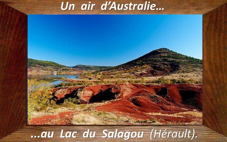 ...au Lac du Salagou (Hérault).