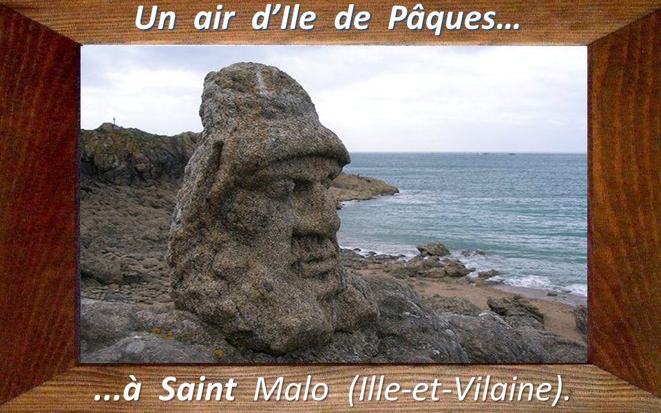 ...à Saint Malo (Ille-et-Vilaine).
