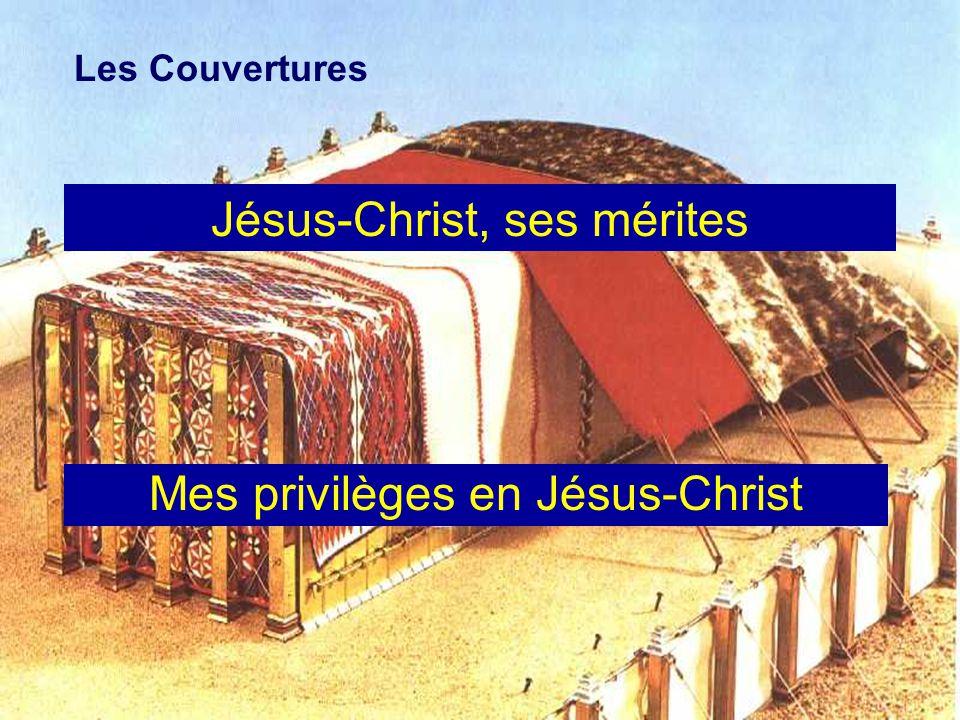 Jésus-Christ, ses mérites